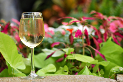 Get Rid of Writer's Block: What Do Wine, Composting & William Stafford All Have in Common?